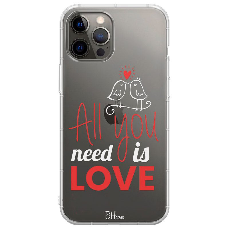 All You Need Is Love Kryt iPhone 12 Pro Max