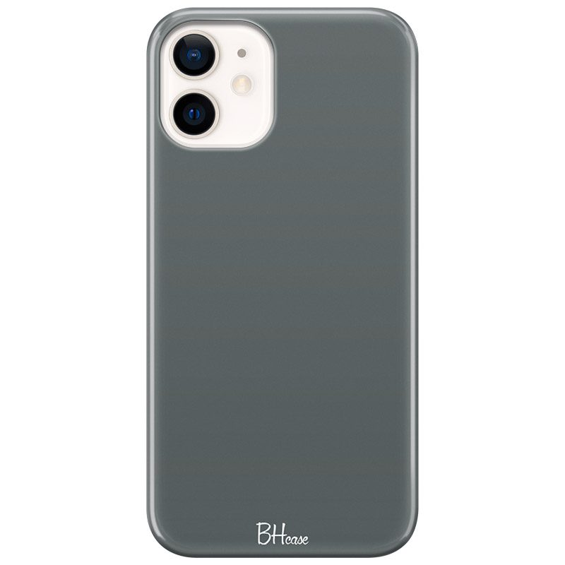 Fade Green Kryt iPhone 12 Mini
