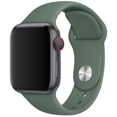 Silikonový Náramek Apple Watch 42/44mm Pine Green Small
