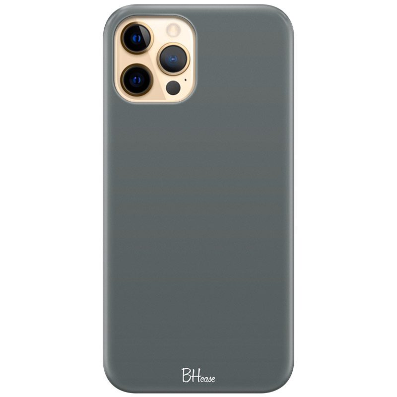 Fade Green Kryt iPhone 12 Pro Max