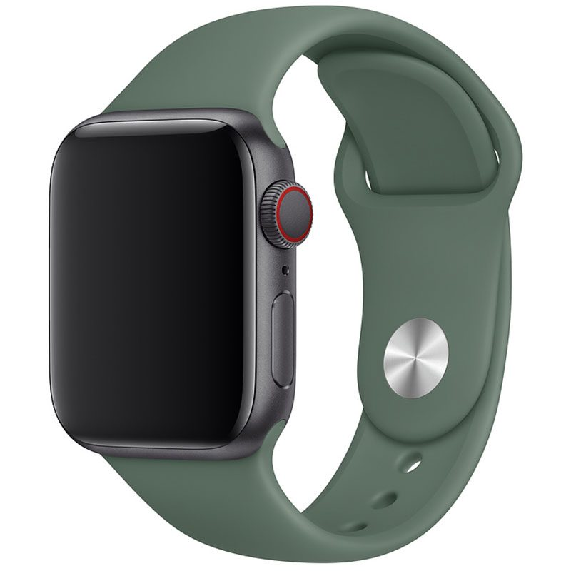 Silicone Szíj Apple Watch 42/44mm Pine Green Small
