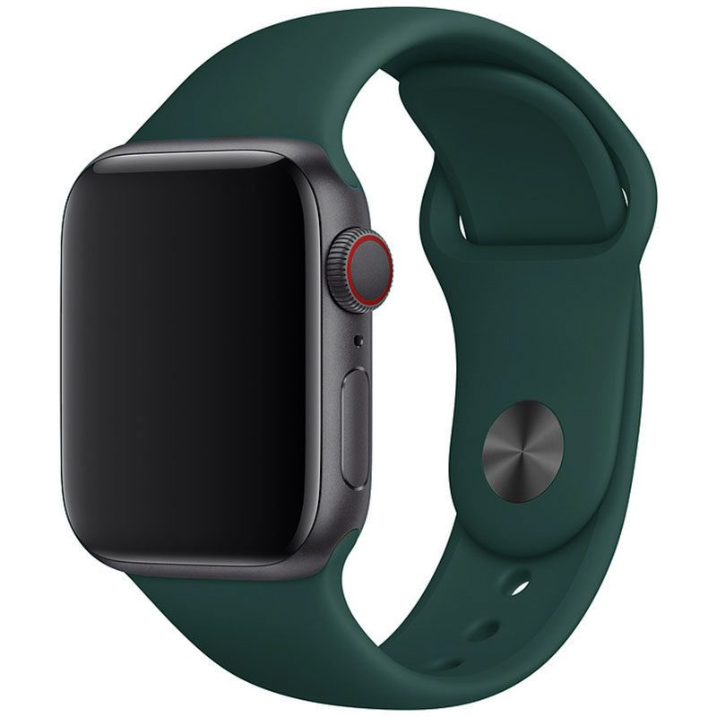 Silicone Szíj Apple Watch 42/44mm Pacific Green Large