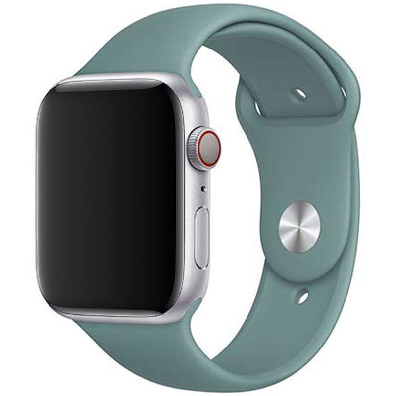 Silicone Szíj Apple Watch 42/44mm Cactus Small