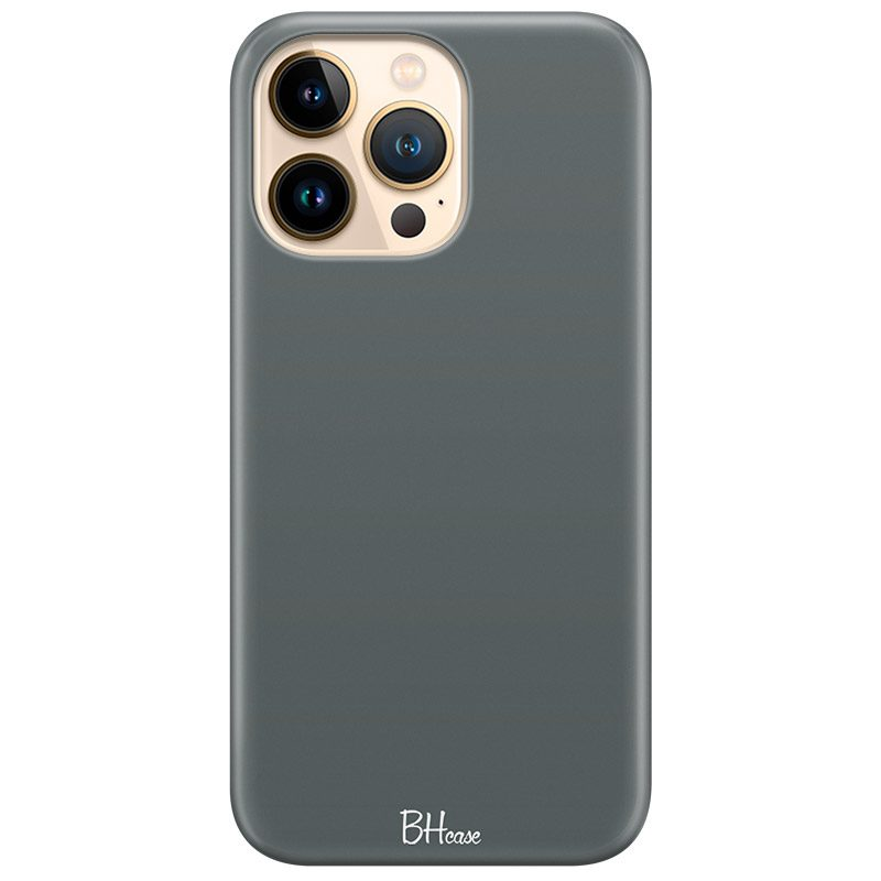 Fade Green Coque iPhone 13 Pro